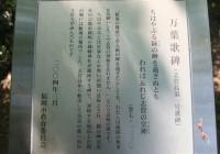 志賀海神社イメージ9